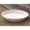 Only One 信楽焼 大型水鉢 ナチュラルマット釉 サイズLL MZ3-LB75N