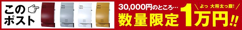 アルフェイス数量限定1万円ポッキリ