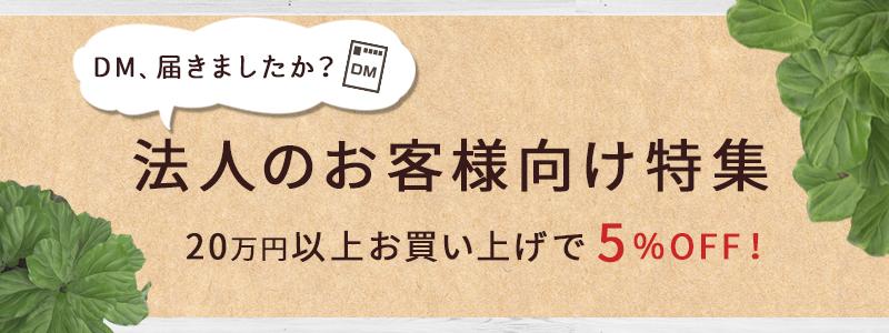 DM届きましたか? 法人のお客様向け特集 20万円以上お買い上げで5%OFF!